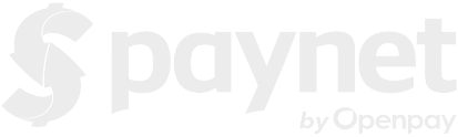Paynet - logo